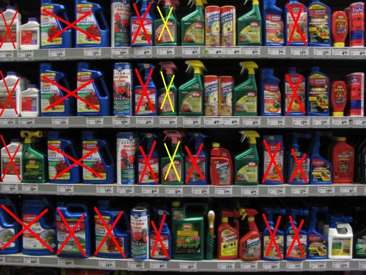 Insecticide display at a local garden center. Red cross-outs contain imidacloprid; yellow acetamiprid.