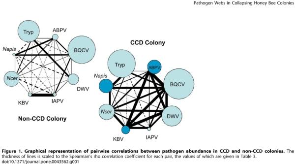 Pathogen Webs